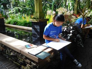 Botanical illustration took place in the Orchid House