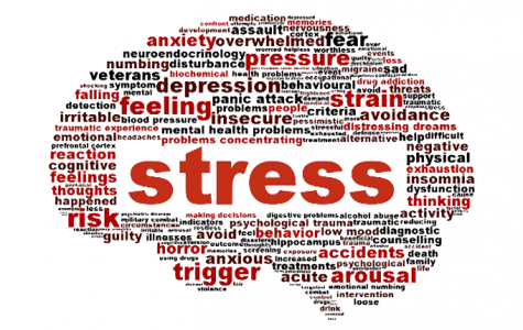 Stress and Stress Controversy