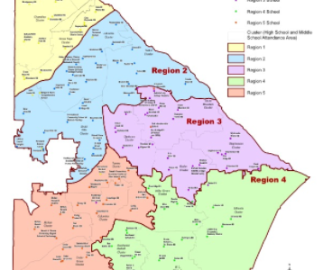 Redistricting's Role in Restricting Diversity