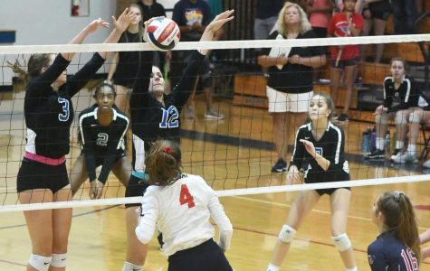 Lady Bulldogs Shut Out Dunwoody Volleyball Team