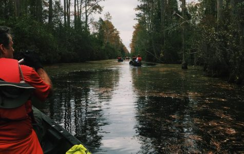 What Are You Doing in My Swamp: Protecting the Okefenokee