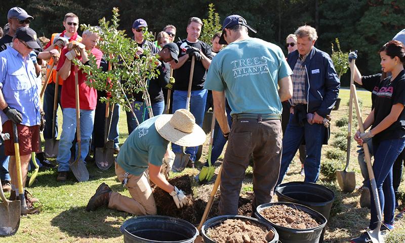 Trees Atlanta volunteers hard at work.