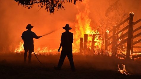 Raging Bushfires in Australia: What You Need to Know