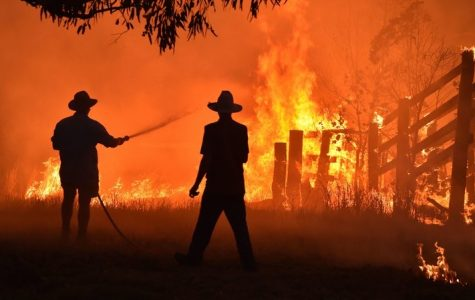 People attempt to control the bush fires raging in Australia.