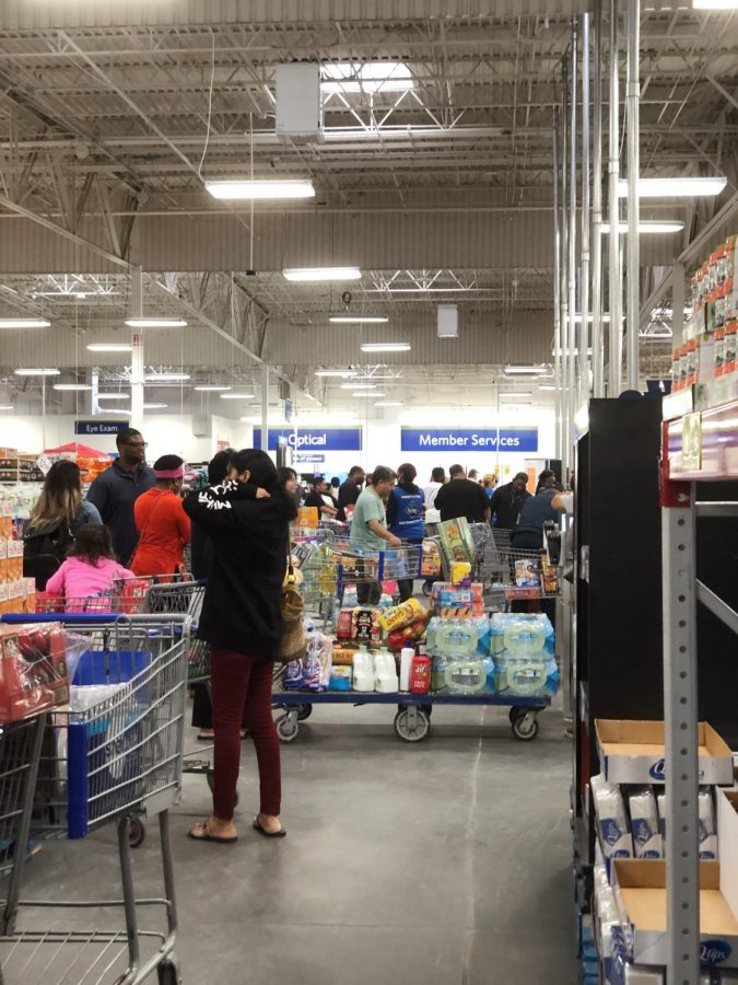 Chaos+ensues+at+the+Kroger+check-out+line.